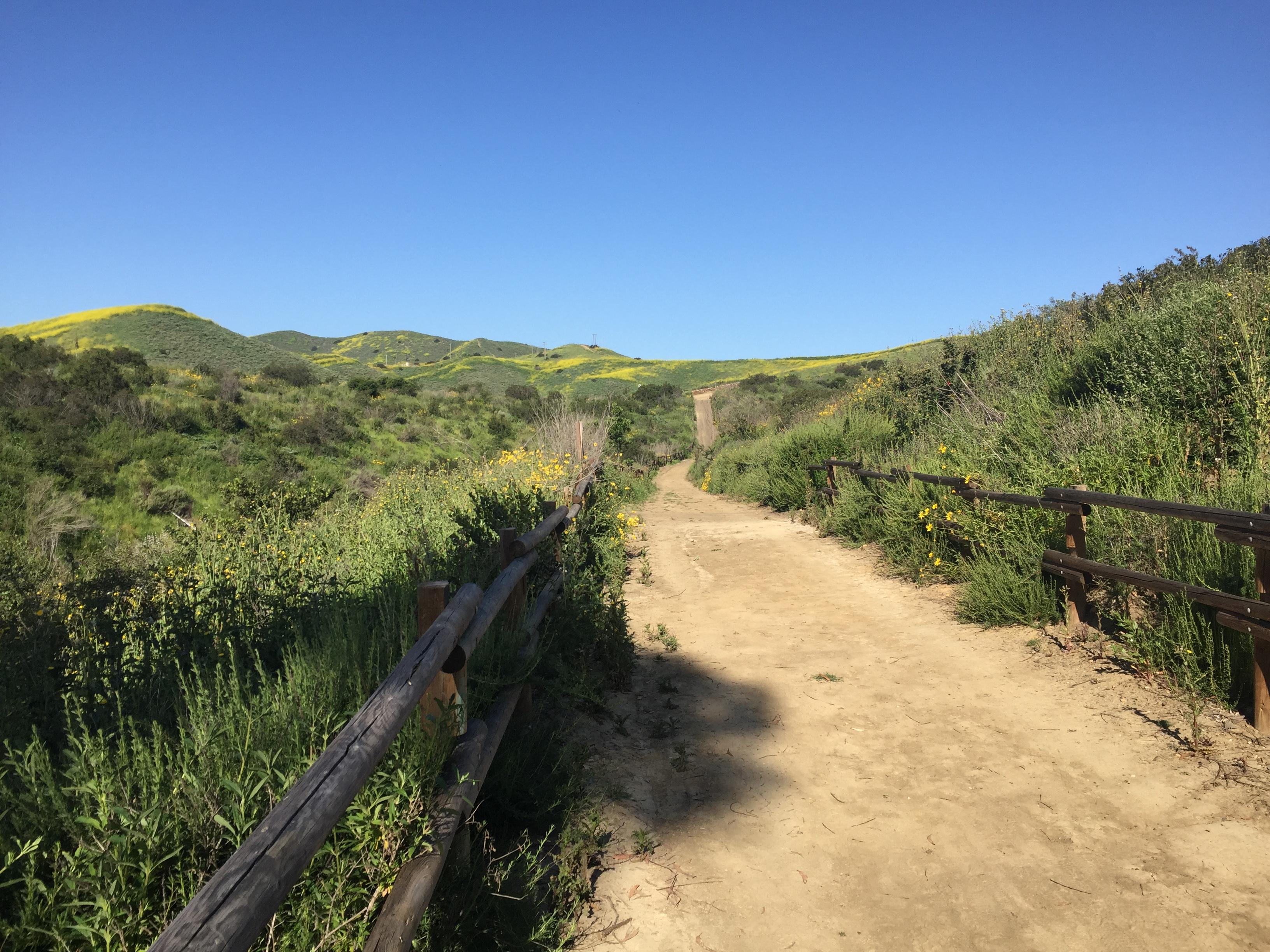 public trail w css
